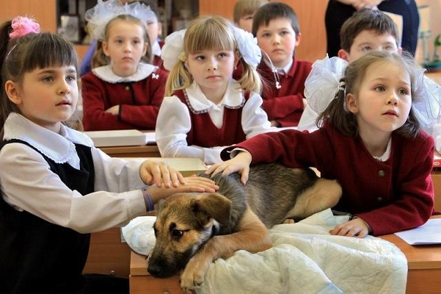 Photo credit: http://petrosphotos.livejournal.com/?skip=120