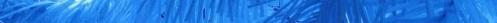 border cmas blue