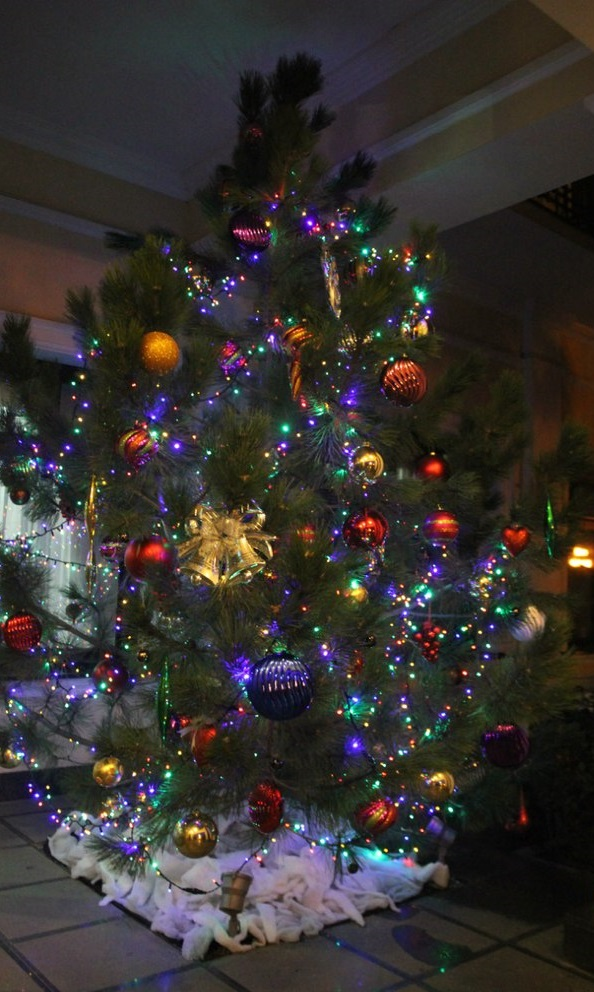 A tree in a Yalta shop. (Photo: Anna Panchenko)